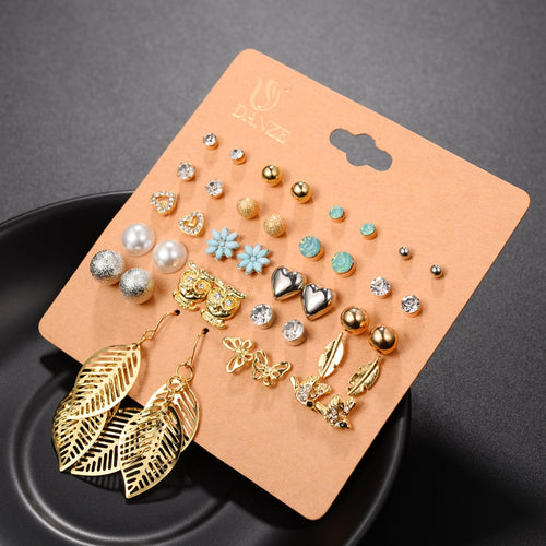 20 Piece Earring Set