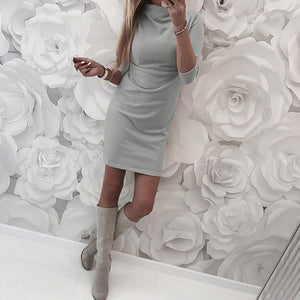 Turtle neck Tight Knit Dress