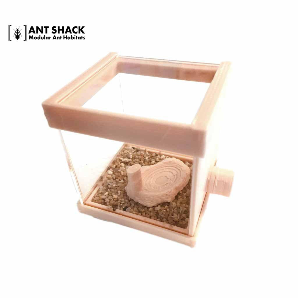 Ant Shack Outworld Small Kit