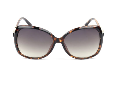 D48 - Women's Deluxe Designer Oval Butterly Sunglasses - Iris Fashion Inc. | Wholesale Sunglasses and Glasses