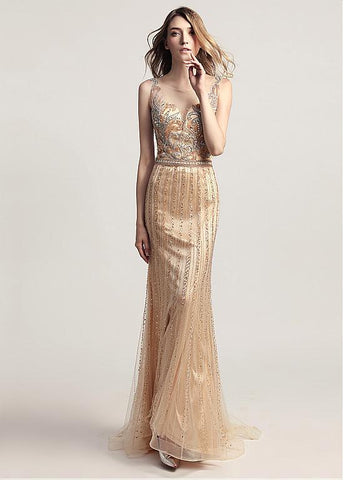 Gold Tulle Scoop See Through  Full-length Mermaid Evening Dress