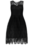 Black Full Lace Round Neck Sleeveless Flare Dress