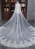 Charming Tulle Cathedral Wedding Veil With Lace Appliques