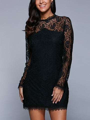 Black  Bodycon See-Through Dress
