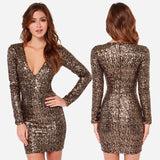 Metallic Sequined Embroidery V Neck Pencil Dress