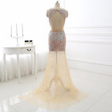 Champagne Rhinestone Open Back Sleeveless Dress