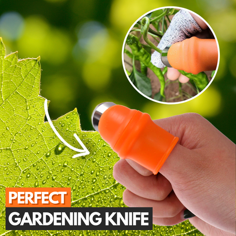 garden tool for removing weeds