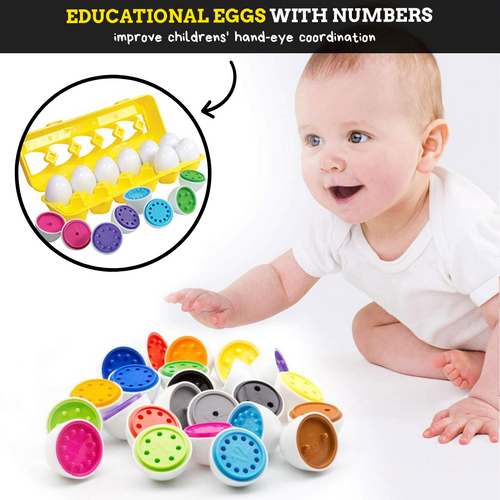 Educational Matching Eggs (12 pcs set) Numbers 12 pcs Educational Eggs