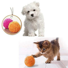 Load image into Gallery viewer, Fun-mazing Roller Ball Toy Dog Toys