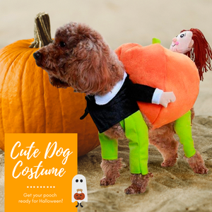 HalloPooch® Pumpkin Halloween Dog Costume Halloween Products