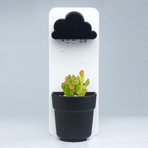 Rain Cloud Watering Pot All black Flower Pots & Planters