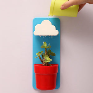 Rain Cloud Watering Pot Blue / Red Flower Pots & Planters