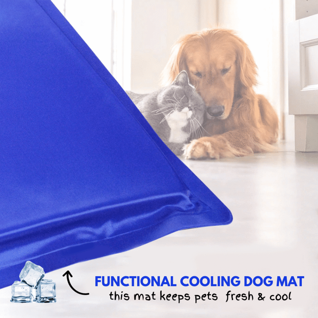 Summer Trend - Cooling Dog Mat Small (30 cm x 40 cm) Dog Accessories