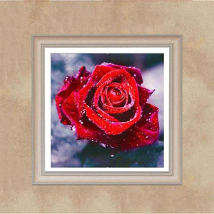 Vibrant Rose Diamond Embroidery Kit L Embroidery