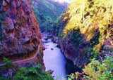 Auckland Private Tour - Karangahake Gorge - Beginner