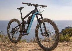 Rotorua - Electric Mountain Bike Rental!