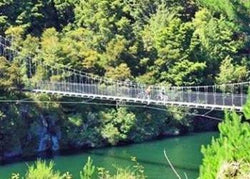 Tuesday - Waikato River Trail - Arapuni village to Waipapa Dam to Maraetai Dam: Intermediate