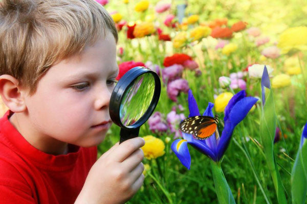24 Ways To Develop Curiosity