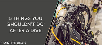 5 Things You Shouldn't Do After A Dive