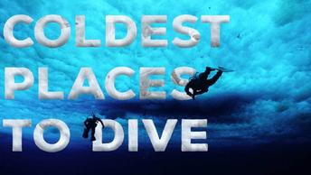 The Coldest Places To Scuba Dive