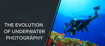 The Evolution Of Underwater Photography