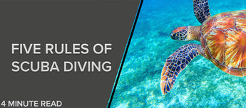 five Rules of Scuba Diving