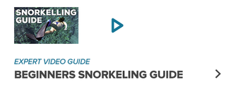 Dive in to Snorkelling with our beginners guide