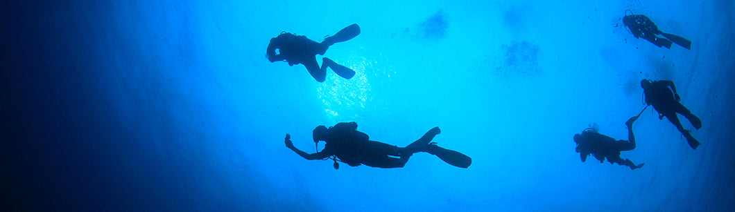 Scuba Dive Insurance you can rely on