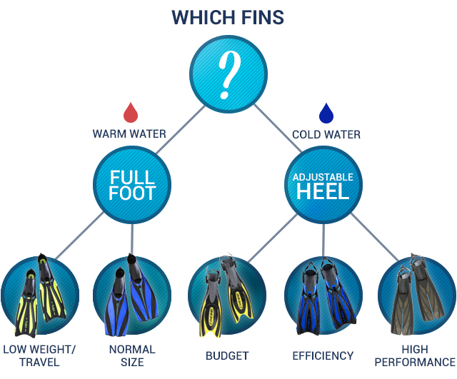 A Buyers Guide To Fins