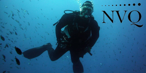 NVQs in Diving