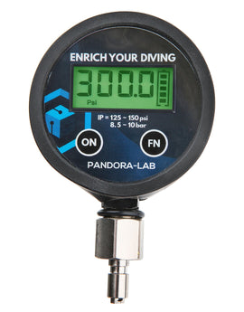 Pandora Digital Interstage Pressure Gauge