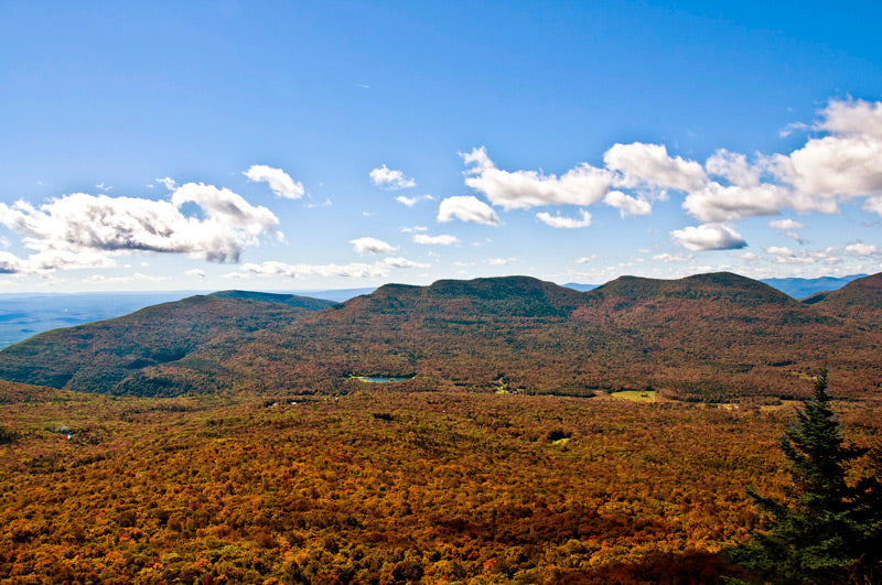 Indian_Head_and_Twin_Mountains_on_the_Eastern_Devil's_Path,_October_2012