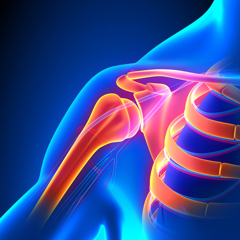 bigstock-Shoulder-Joint-Anatomy-Pain-Co-82169780