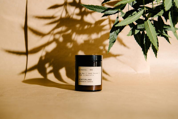 Hinterland - Evergreen Bamboo Soy Candles