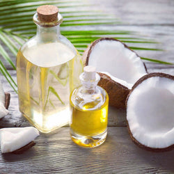 Coconut Fragrance Essential Oil