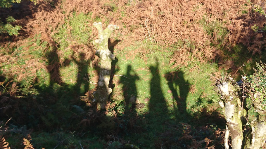 Five Go Mad in the Quantocks