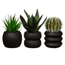 Black Cement Mini Planters by Sass & Belle