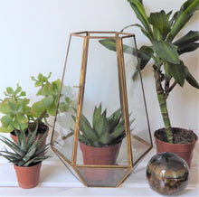 Nandi Glass Terrarium ~ Fair Trade by Dassie Artisan