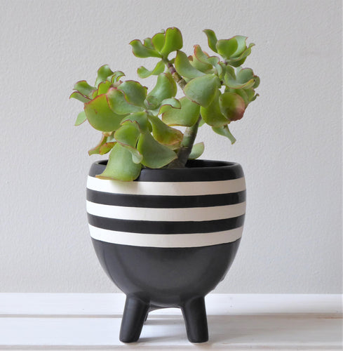 Striped Monochrome Planter on Legs by Sass & Belle