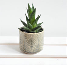 Leaf Design Mini Plant Pot Cover by Gisela Graham in navy or grey.