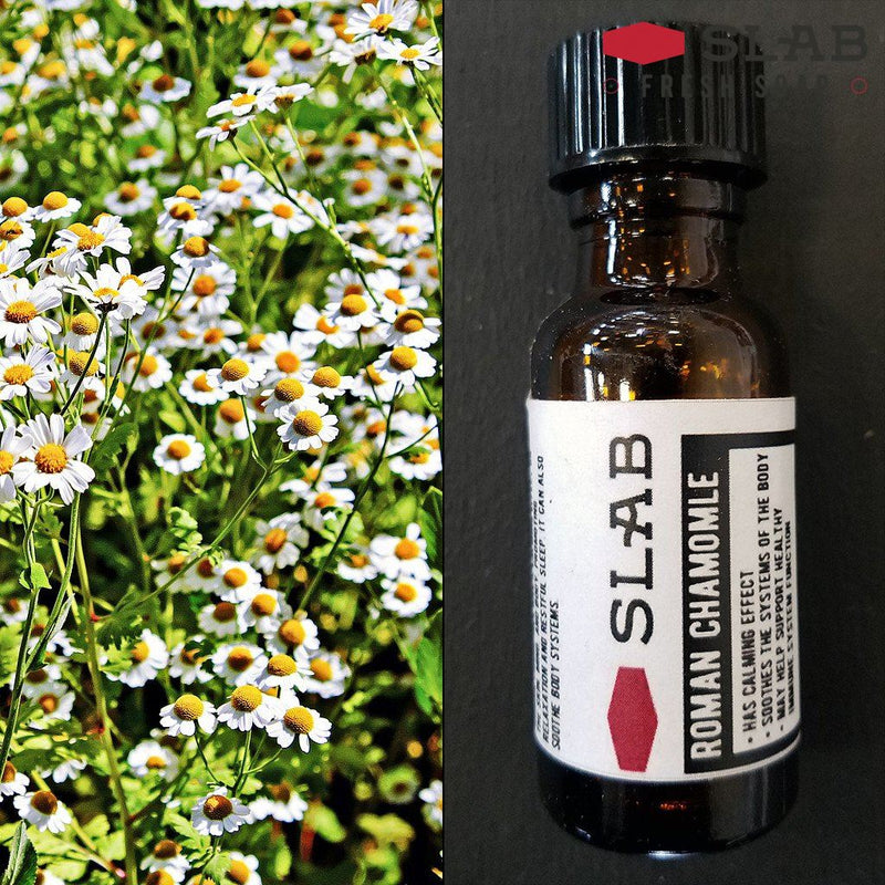 Chamomile Oil | Essential Oil | SLAB FRESH SOAP™