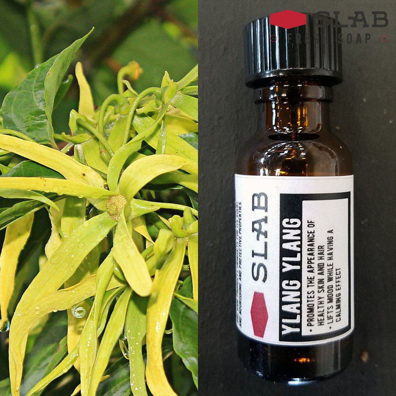 Ylang Ylang Oil | Essential Oil | SLAB FRESH SOAP™