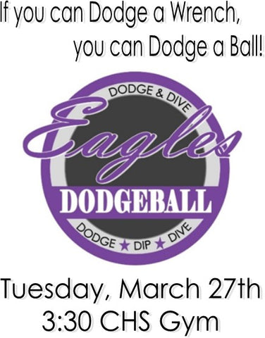 Dodgeball Registration