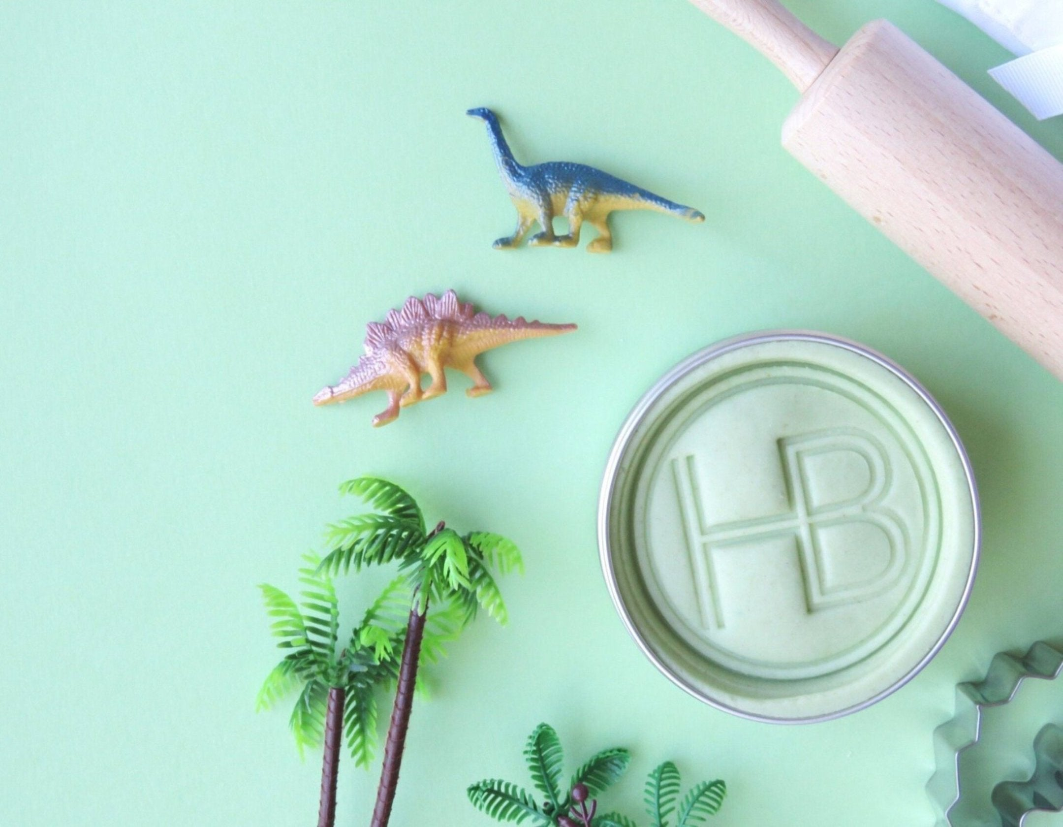 Dino 'Biscuit Making' Box