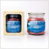 Clean Air Cinnaberry- 16oz Decorator Jar Scented Candle - Southern Candle