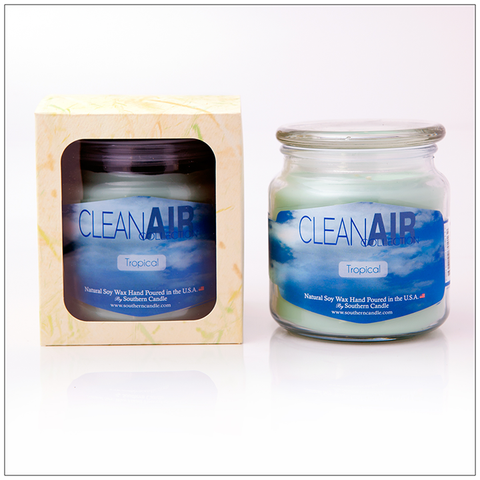 Clean Air Cinnaberry- 16oz Decorator Jar Scented Candle