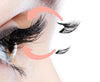 Dual Strip Magnetic Lashes *New and Improved* (All Styles)