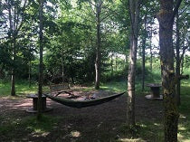 Wood Camping / Hammocking