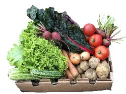 Medium Vegetable Box (9 varieties)