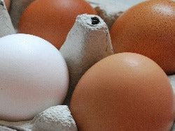 Free Range Eggs (large)